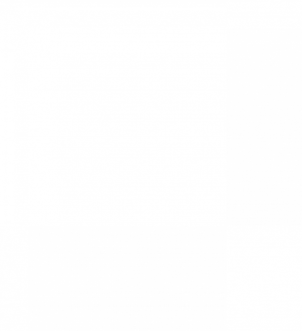 Finale du Classic Race Kozoom